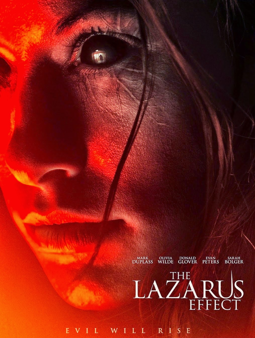 "Poster for ""The Lazarus Effect"""